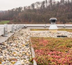Není zelená střecha příliš drahý luxus?