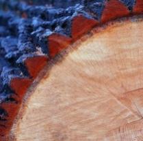 Impregnace a ochrana dřeva