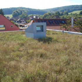 Vyšší dotace pro zelené střechy